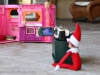 Peeping Tom Elf on the Shelf via lilblueboo.com