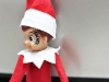 Hangover 2 (Tyson) Elf on the Shelf via lilblueboo.com #inappropiateelf #elfontheshelf #elf