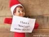 Elf Shaming: New Coke Elf on the Shelf via lilblueboo.com #elfshaming #elfontheshelf #christmas