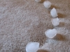 Random Household Tips: Get rid of old carpet divots and dents with ice at Fluff Designs Blog via lilblueboo.com