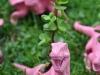 Recycled Toys - Planters via lilblueboo.com