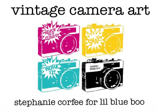 vintage camera art via lilblueboo.com