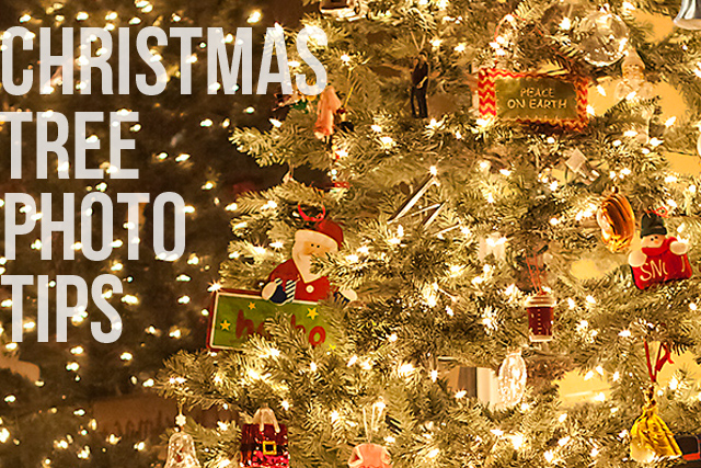 How to photograph a Christmas Tree and Christmas tree lights via lilblueboo.com (click through for the time lapse video of the DIY ornaments!)