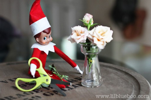Elf on the Shelf Ideas - Martha Stewart Elf