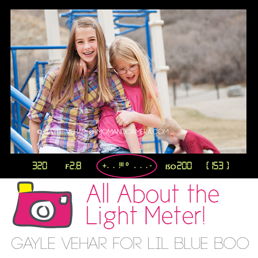 All about your camera light meter #photography via lilblueboo.com