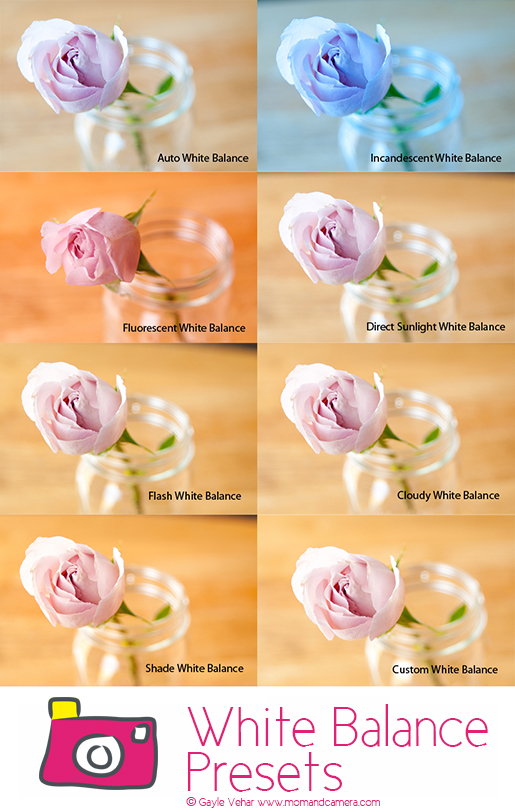All About White Balance Presets  #photography via lilblueboo.com