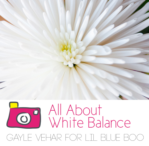 All About White Balance #photography via lilblueboo.com