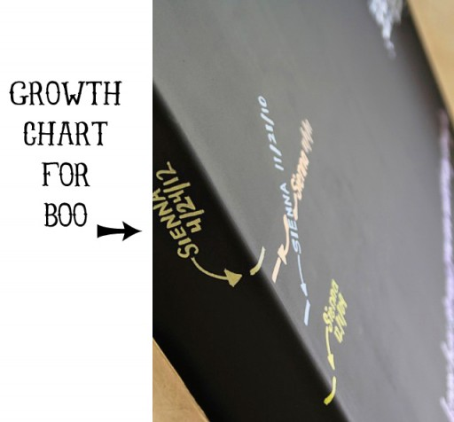Chalkboard Growth Chart via lilblueboo.com