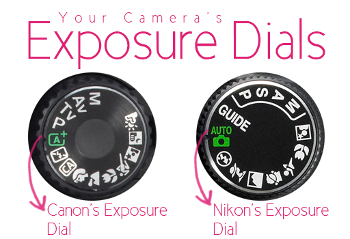 Nikon and Canon Exposure Dial by Gayle Vehar via lilblueboo.com