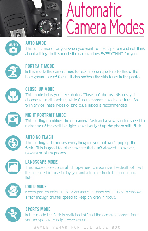 Automatic Camera Modes #photography by Gayle Vehar via lilblueboo.com