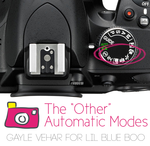 The Automatic Exposure Scene Modes by Gayle Vehar via lilblueboo.comThe Automatic Exposure Scene Modes