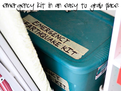 Make an Emergency Kit (free download) via lilblueboo.com #organization