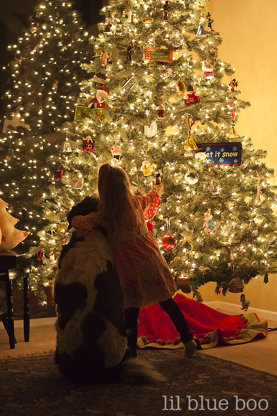 Christmas Tree Photography with your DSLR (A Tutorial)