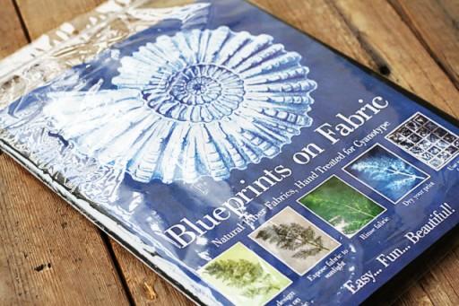 Blueprints on Fabric via lilblueboo.com