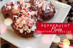 peppermint mocha shortbread cookies via lilblueboo.com