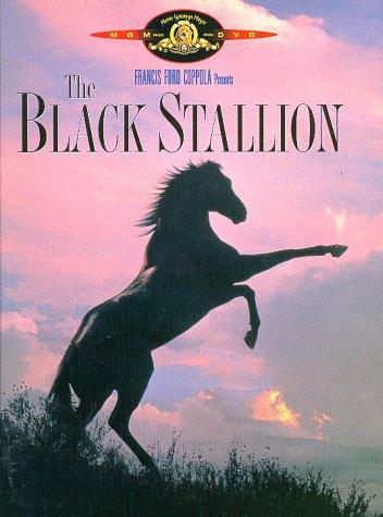 Great Horse Movies: Black Stallion via lilblueboo.com