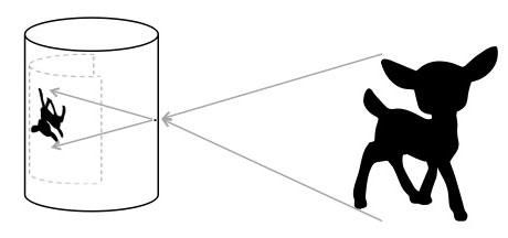 How the pinhole camera works via lilblueboo.com #pinhole #pinholephotography #photography #darkroom