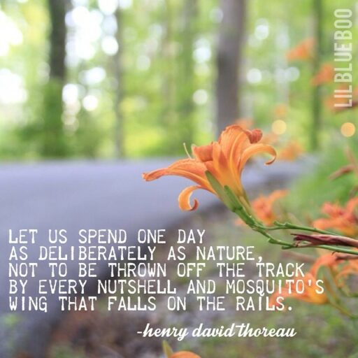 let us spend every day deliberately - quote by thoreau