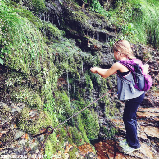 How to Get to Mt. Le Conte Lodge