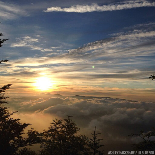 Myrtle Point from top of Mt LeConte in the Smokies #sunrise #mtleconte #myrtlepoint