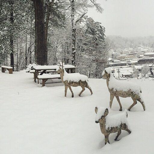 snowedin
