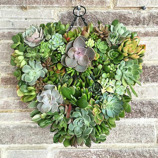 Heart Shaped Succulent Wreath