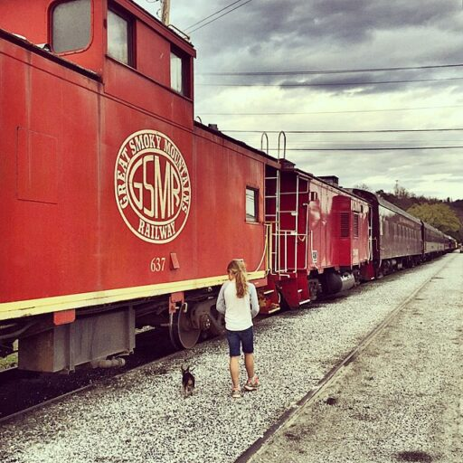 Great Smoky Mountains Railroad, Bryson City