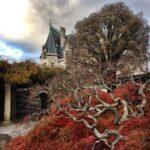 The Biltmore Estate in Asheville