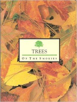trees of the smokies