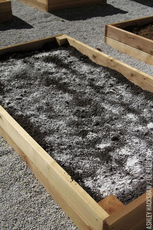 The Best Soil for a Raised Bed Vegetable Garden