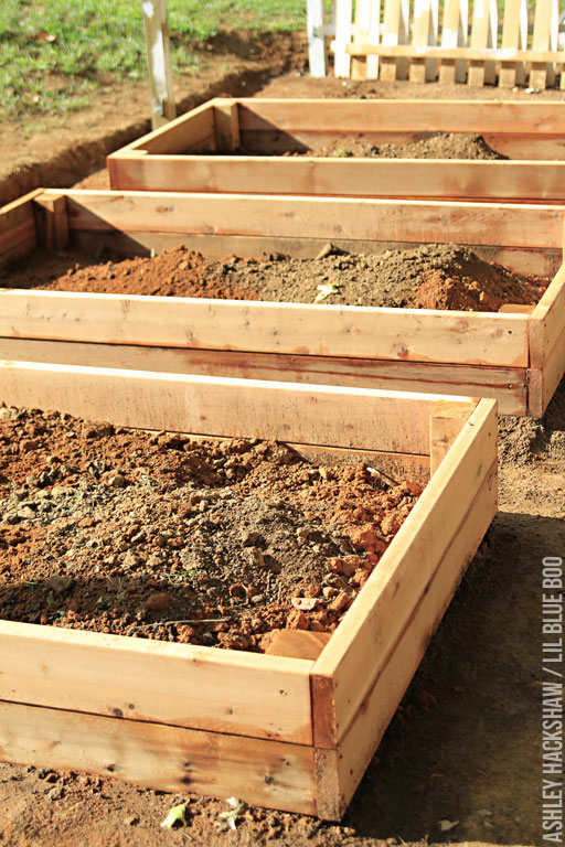 best bagged soil for raised beds 2