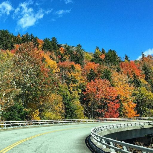 Fall Color Report in the Great Smoky Mountains - Blue Ridge Parkway