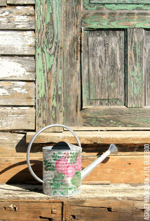 Country Chic Hand Painted Watering Can - galvanized watering can