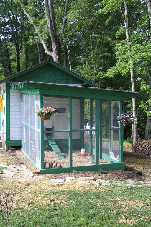 Best Chicken Run Designs - Easy to clean chicken coop