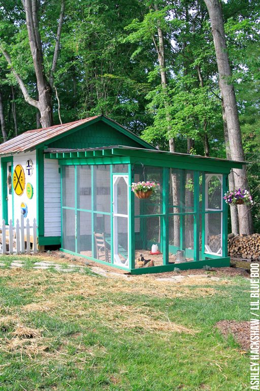 Best Chicken Coop Designs - Most Amazing Chicken Coops