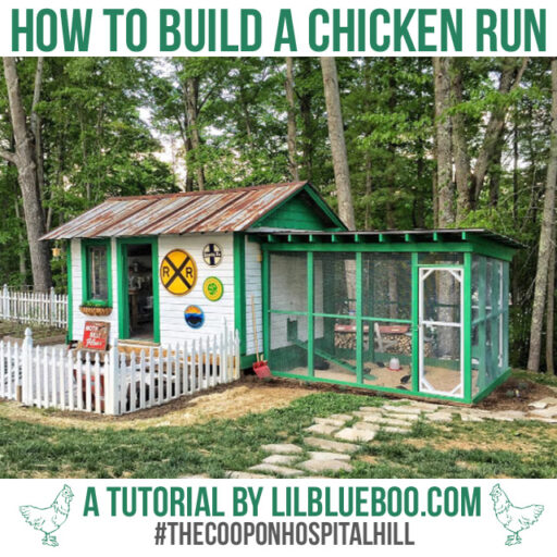 How To Build A Chicken Run Lil Blue Boo Bloglovin