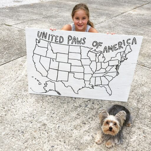 United Paws of America - Raising money for our local western north carolina animal shelter