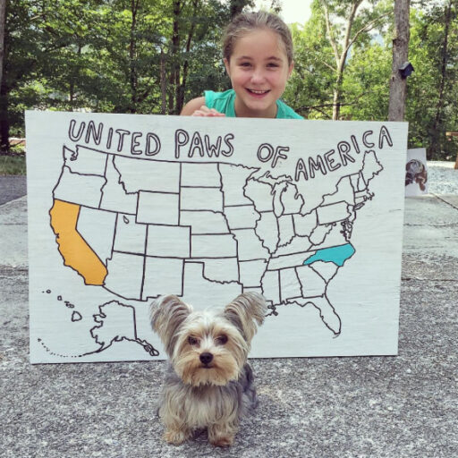 Love of Animals - United Paws of America raising money by state