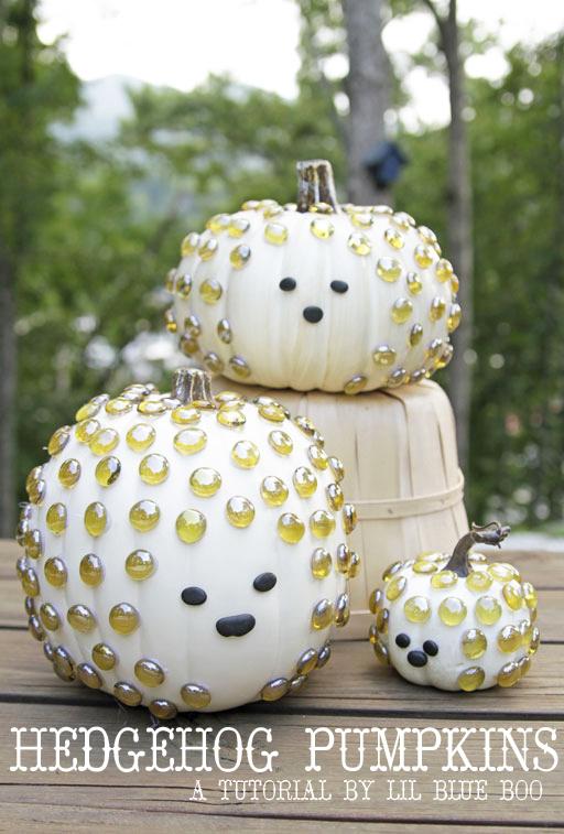 hedgehog pumpkins pumpkin decorating ideas lil blue boo