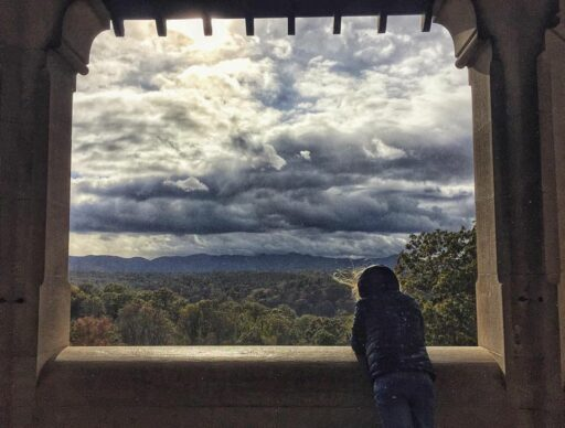 I am the storm - Biltmore estate