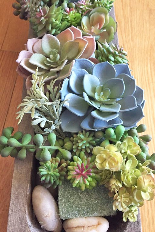 Creating a succulent arrangement that looks real