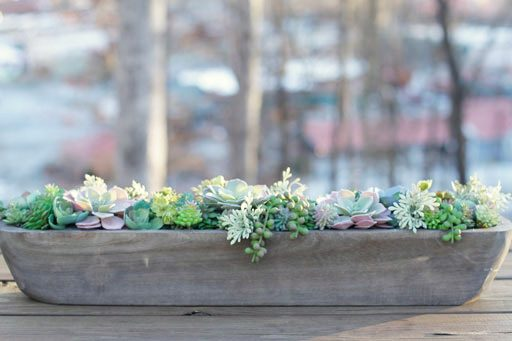 Decorating a table with succulents - table decor for all seasons and weddings etc