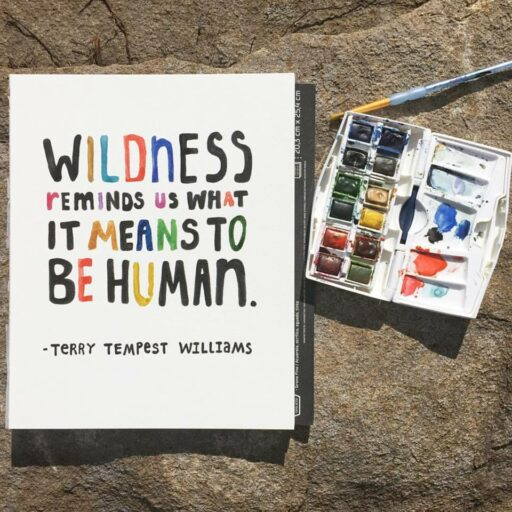 Daily Painting - Wildness Quote - Watercolor