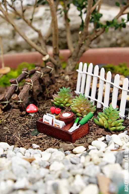 Fairy Garden for Small Spaces