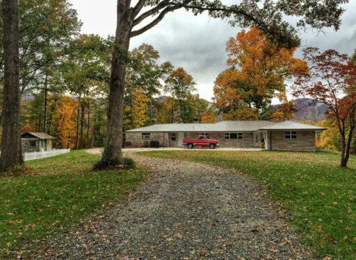 Landscaping ideas - gravel driveway