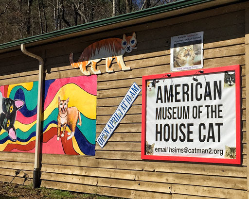 Museum Devoted Entirely To Cats - The American Museum of the House Cat
