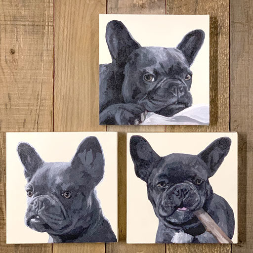 Pet Portraits by Ashley Hackshaw - Dog painting - Frenchie painting